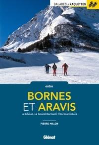 Pierre Millon - Balades à raquettes entre Bornes et Aravis - La Clusaz, Le Grand-Bornand, Thorens-Glières.