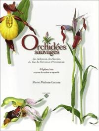 Pierre Moënne-Loccoz - Orchidées sauvages des Ardennes, des Savoies, du Var, du Vercors et d'Andalousie - 44 Planches, crayons de couleur et aquarelles.