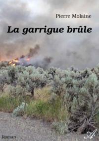 Pierre Molaine - La garrigue brûle.
