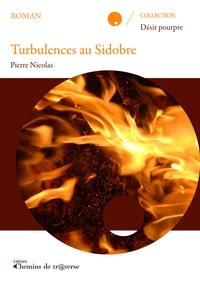 Pierre Nicolas - Turbulences au Sidobre.
