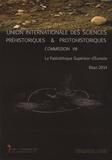 Pierre Noiret et Denise Leesch - Le paléolithique supérieur d'Eurasie - Bilan 2014.