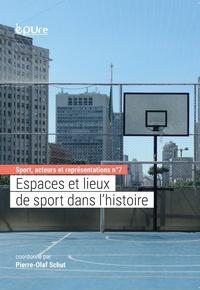 Pierre-Olaf Schut - Espaces et lieux de sport dans l'histoire.