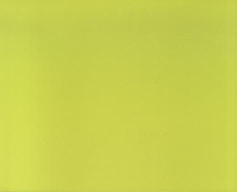 Pierre Patrolin - Martine Damas, la vision du volume en couleurs.