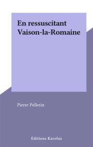 Pierre Pellerin - En ressuscitant Vaison-la-Romaine.