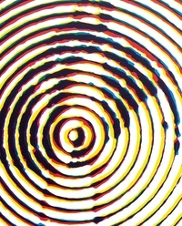 Meilleur téléchargeur de livres Alain Jacquet par Pierre Restany, Marie Laborde, Christophe Leflot 9782359063080 ePub PDF MOBI (Litterature Francaise)