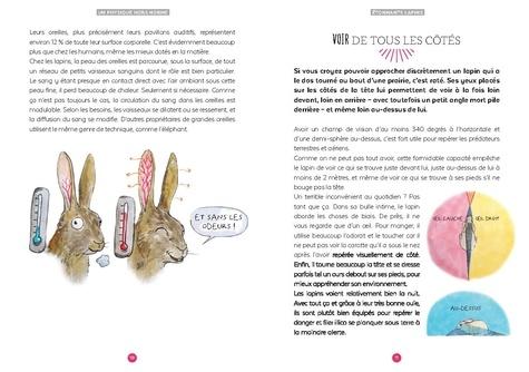 Etonnants lapins. La fabuleuse histoire des grandes oreilles