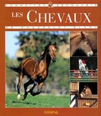 Pierre Rousselet-Blanc - Les chevaux.