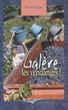 Pierre Sogno - Galère les vendanges.