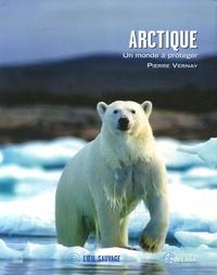 Pierre Vernay - Arctique - Un monde à protéger.