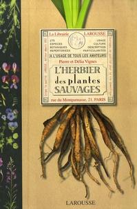 Feriasdhiver.fr L'herbier des plantes sauvages Image