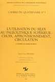 Pierre-Yves Demars - L'utilisation du silex au paléolithique supérieur, choix approvisionnement, circulation : l'exemple du bassin de Brive.