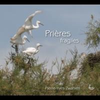 Pierre-Yves Zwahlen - Prières fragiles.