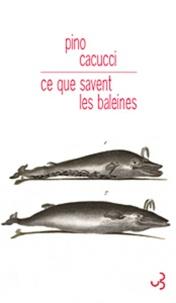 Pino Cacucci - Ce que savent les baleines.