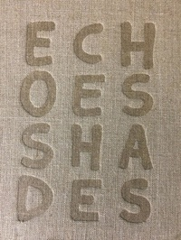 Piotr Zbierski - Echoes Shades.