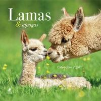 Ebook téléchargements torrent pdf Calendrier Lamas & alpagas
