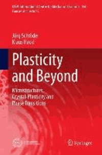Plasticity and Beyond - Microstructures, Crystal-Plasticity and Phase Transitions.