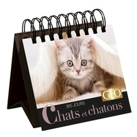 Play Bac - 365 jours Chats et chatons.