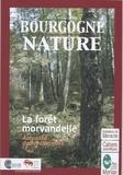 PNR Morvan - La forêt Morvandelle - Parc de Morvan.
