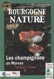 PNR Morvan - Les champignons du Morvan - Parc du Morvan.