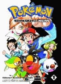 Pokémon Schwarz und Weiß 01.
