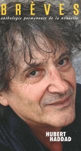 Laurent Flieder - Brèves N° 97 : Hubert Haddad.