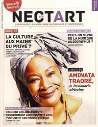 Eric Fourreau - Nectart N° 6, premier semest : La culture aux mains du privé ?.