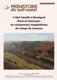 Edmée Ladier - L'abri Gandil à Bruniquel (Tarn-et-Garonne) : un campement magdalénien du temps de Lascaux.