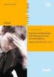 Psychische Belastung und Beanspruchung am Arbeitsplatz - Inklusive DIN EN ISO 10075-1 bis -3.