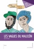 Bernard Dubois - Les Vagues du Malecón.