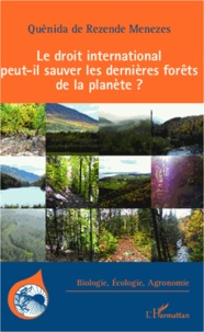 Deedr.fr Le droit international peut-il sauver les dernières forêts de la planète ? Image