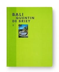 Quentin de Briey - Bali.