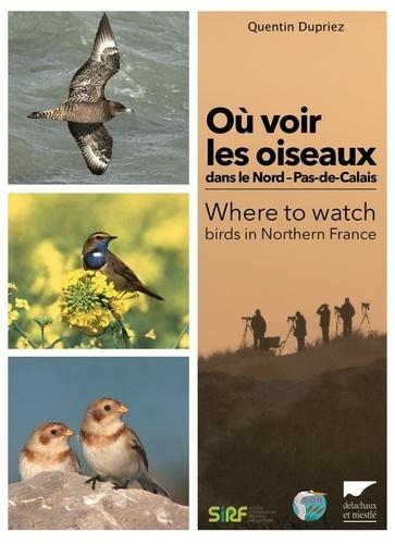 Quentin Dupriez - Où voir les oiseaux dans le Nord-Pas-de-Calais.