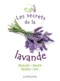 Rachel Frély - Les secrets de la lavande.