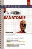 Radwan Kassir - Anatomie.