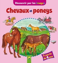 Raffaella Cosco - Chevaux et poneys.