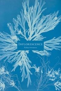 Raluca Antonescu - Inflorescence.