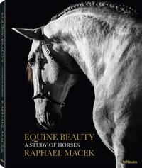 Galabria.be Equine beauty - A study of horses, édition français - anglais - allemand - espagnol Image