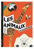 Raphaël Martin et Justine de Lagausie - Les animaux en panoramique.