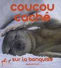 Raphaël Sané - Coucou caché sur la banquise.