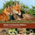 Räuber in heimischen Wäldern - Fuchs, Dachs, Marderhund und Waschbär.