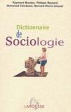 Raymond Boudon et Mohamed Cherkaoui - Dictionnaire de sociologie.