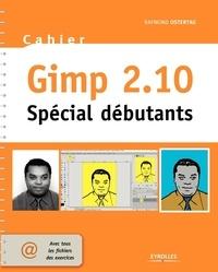 Raymond Ostertag - Cahier Gimp 2.10 - Spécial débutants.