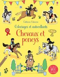 Rebecca Finn - Chevaux et les poneys - Avec plus de 200 autocollants.