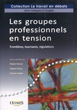 Régine Bercot - Les groupes professionnels en tension - Frontières, tournants, régulations.