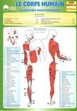 Régis Demounem - Le corps humain - Planches anatomiques.