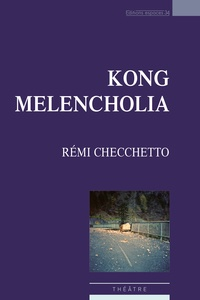 Rémi Cecchetto - Kong Melencholia.
