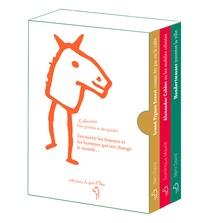 Rémi David et Dominique Maurizi - 3 artistes dans la ville - 3 volumes : Hundertwasser, inventer la ville ; Alexander Calder ou les mobiles célestes ; Ernest Pignon-Ernest, comme des pas sur le sable.