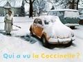 Rémi Noël - Qui a vu la Coccinelle ?.