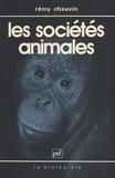 Rémy Chauvin et Claude-Louis Gallien - Les sociétés animales.