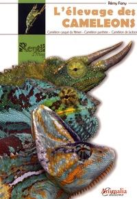 Alixetmika.fr L'élevage des caméléons Image